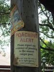 Sign outside Kilimanjaro Safari
