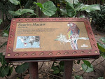 Macaw sign